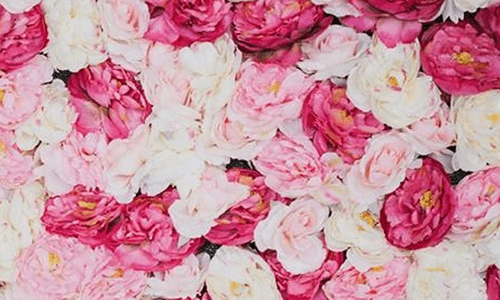 Red, Pink, & White Floral Wall